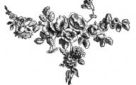 Dark Flowers Antiques  11 Free Wallpaper