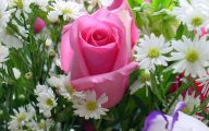 Flower Wallpaper Rose  15 Widescreen Wallpaper