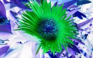 Green Exotic Flowers  33 Background Wallpaper