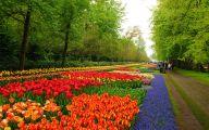 Green Flowers For Garden  29 Wide Wallpaper