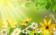 Green Flowers In Summer  12 Wide Wallpaper