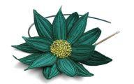 Green Lotus Flowers  32 Hd Wallpaper