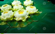 Green Lotus Flowers  34 Desktop Wallpaper