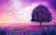 Purple Flowers Hd Wallpapers  1 Free Wallpaper