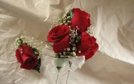 Red Flowers For Corsages  24 Free Hd Wallpaper