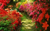 Red Flowers For Garden  20 Cool Hd Wallpaper