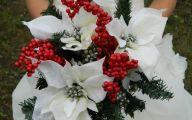 White Flowers For Christmas  14 Wide Wallpaper