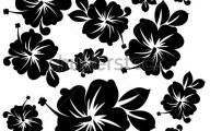 White Flowers In Hawaii  11 Wide Wallpaper