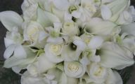 White Flowers In October  16 Widescreen Wallpaper