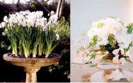 White Flowers In Winter  14 Desktop Wallpaper