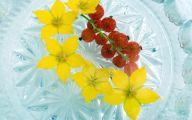 Yellow Flowers Red Berries  25 Free Hd Wallpaper