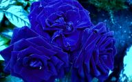 Beautiful Flowers Wallpaper Blue On Blue  8 Background