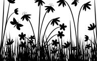 Black And White Flowers Wallpaper  4 Hd Wallpaper