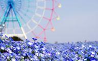 Blue Flowers Desktop Wallpaper  6 Free Hd Wallpaper