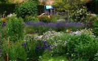 Blue Flowers For Garden  3 Free Wallpaper