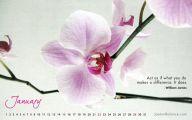 Flower Wallpaper Quotes 14 Widescreen Wallpaper