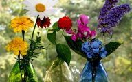 Flowers For Bouquets  100 Cool Wallpaper