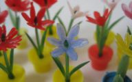Flowers Red Yellow Blue  14 Wide Wallpaper