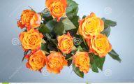Flowers Red Yellow Blue  22 Desktop Background