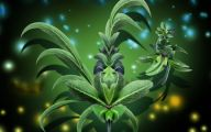 Green Leaf Flowers  12 Widescreen Wallpaper