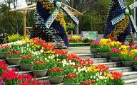 Greenhouse Flowers  30 Desktop Background