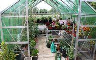 Greenhouse Flowers  6 Widescreen Wallpaper