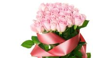 Pink Rose Flowers Images  3 Widescreen Wallpaper