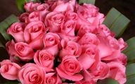 Pink Rose Flowers Wallpapers  6 Background Wallpaper