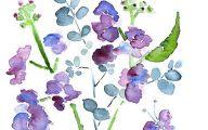 Purple Flowers Painting  3 Background