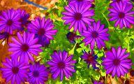Purple Flowers Painting  5 Cool Wallpaper