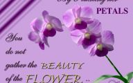 Purple Flowers Quotations  12 Widescreen Wallpaper
