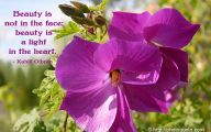 Purple Flowers Quotations  4 Cool Wallpaper