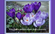 Purple Flowers Quotes  15 Hd Wallpaper