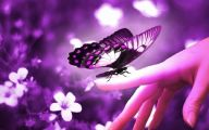 Purple Flowers Quotes  6 Wide Wallpaper