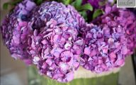 Purple Flowers Types  9 Desktop Background