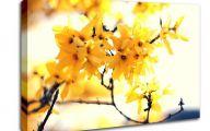Tree Yellow Flowers Uk  5 Hd Wallpaper
