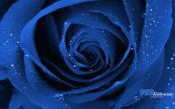 Wallpaper With Blue Flowers  3 Desktop Wallpaper