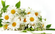 White Flowers For Bouquets  10 Widescreen Wallpaper