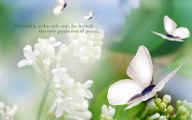 White Flowers Images With Quotes  23 Widescreen Wallpaper