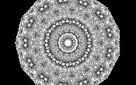 White Flowers Tumblr  4 Hd Wallpaper