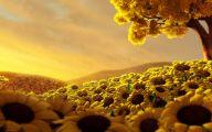Yellow Flowers Wallpaper  6 Widescreen Wallpaper