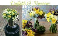 Yellow Spring Flowers Uk  35 Widescreen Wallpaper