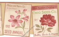 9 Red Flower Wallpaper Border  4 Hd Wallpaper