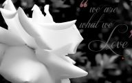 Black And White Rose Wallpaper  7 Widescreen Wallpaper
