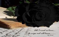 Black Rose Wallpaper  11 Desktop Background