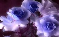 Blue And White Rose Wallpaper  12 Background