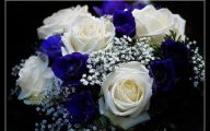 Blue And White Rose Wallpaper  23 Wide Wallpaper