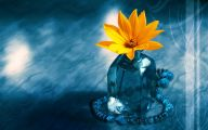Blue And Yellow Flower Wallpaper  18 Cool Wallpaper