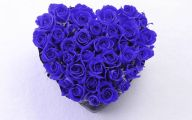 Blue Rose Wallpaper  62 Cool Hd Wallpaper