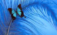 Blue Rose Wallpaper  76 Cool Wallpaper